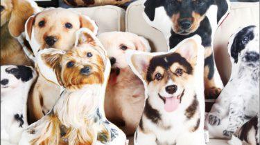 Op deze webshop kun je een kussen van je huisdier laten drukken