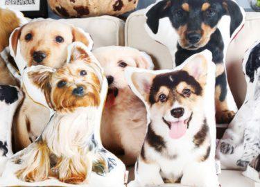Op deze webshop kun je een kussen van je huisdier laten drukken nsmbl