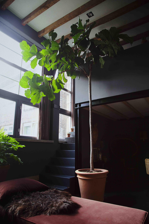 pottenkijken interieur antraciet