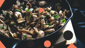 champignons gezond winter