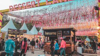 foodfestival tips