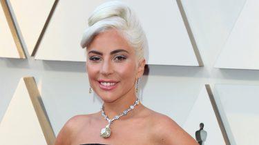 Lady Gaga zoent Dan Horton