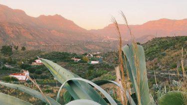 Gran Canaria vakantie tips