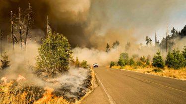 bosbranden australië helpen
